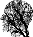 PhD course, Jan 2016:  Tracing brain and behavioral changes across the life span